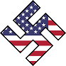 small american swastika icon
